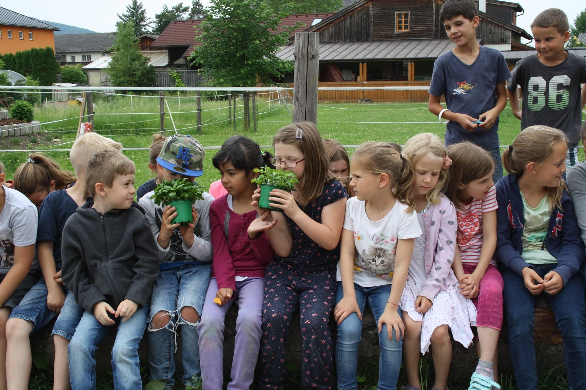 Kinder-Erlebnis-Bauernhof Wals | Tiere hautnah | Verwurzelt in Wals