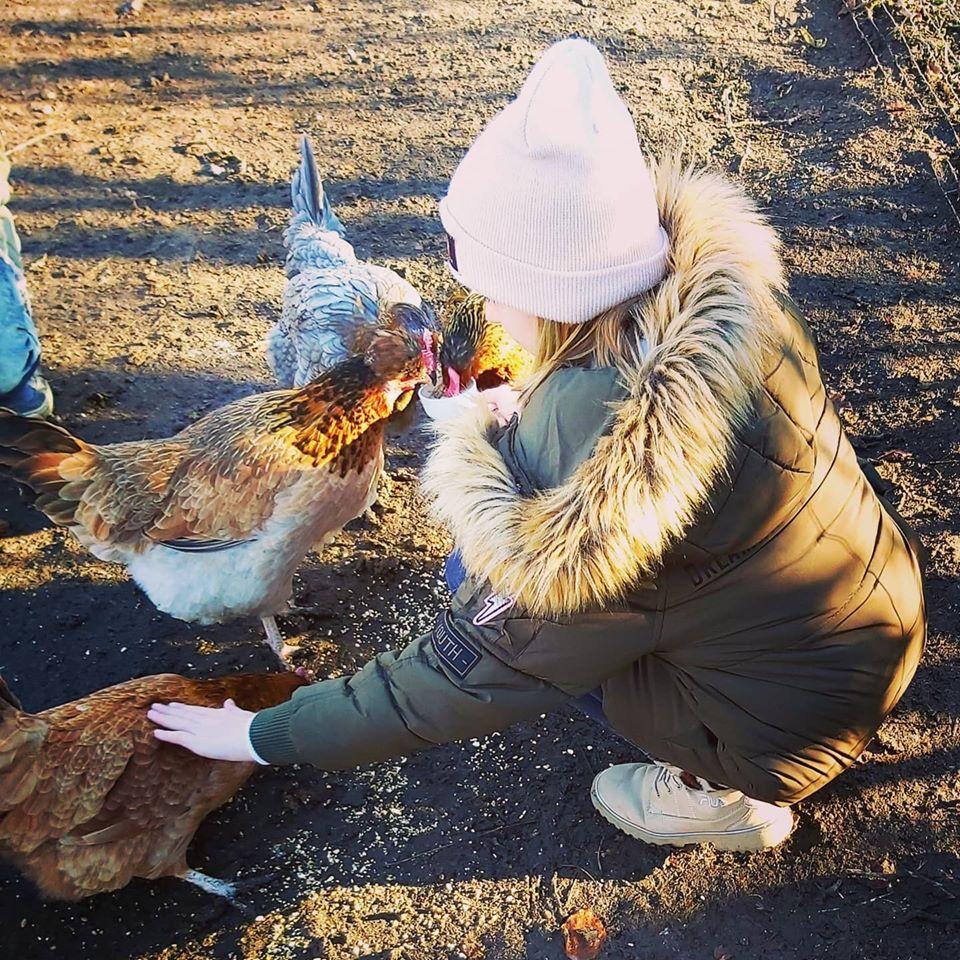 Kinder-Erlebnis-Bauernhof Wals | Tiere hautnah | Die verrückten Hühner