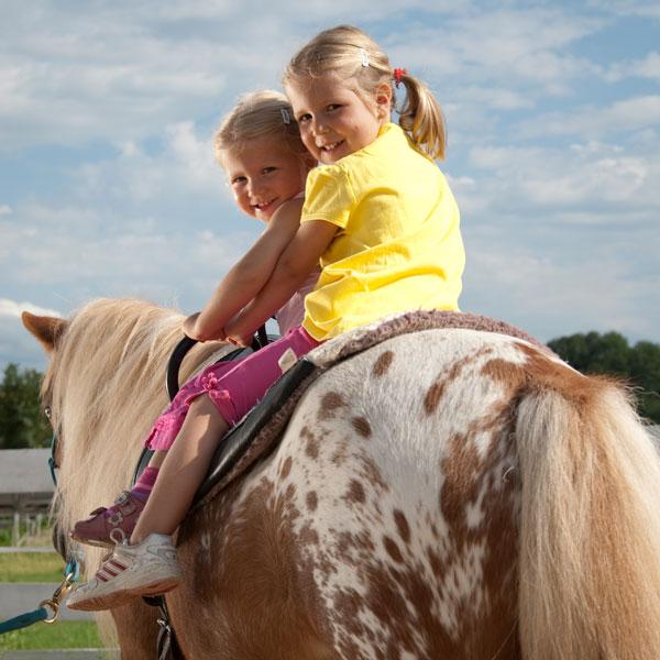 Kinder-Erlebnis-Bauernhof Wals | Tiere hautnah